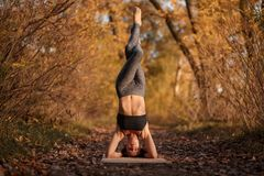 Young woman practicing yoga exercise at autumn park with yellow leaves. Sports and recreation lifestyle stock photos