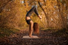 Young woman practicing yoga exercise at autumn park with yellow leaves. Sports and recreation lifestyle stock image