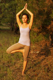 Young woman practicing yoga in the forest Royalty Free Stock Photography