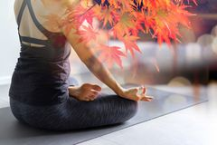 Young woman practicing yoga in gray background.Young people do royalty free stock images