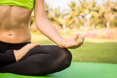 Young woman is practicing yoga in nature. Meditation. Young woman is practicing yoga in nature Royalty Free Stock Photo