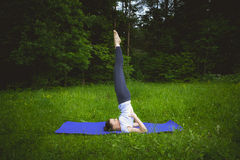 Young woman practicing yoga in the park,Yoga-Salamba Sarvangasana Supported Shoulderstand. Young lady practicing yoga in the forest on the purple mat,Yoga Royalty Free Stock Photography
