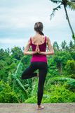 Young woman practicing yoga tree pose with namaste behind the back. On nature background Stock Photos