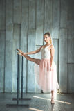 Young woman practising ballet Stock Image