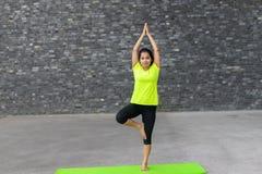 Young woman practising Vrksasana yoga pose Royalty Free Stock Photography