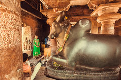 Young woman praying inside the Hindu temple with diety bull Nandi Stock Photos