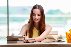 The young woman preparing for school exams Royalty Free Stock Images
