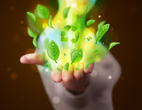 Young woman presenting eco green leaf recycle energy concept Royalty Free Stock Image