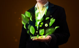 Young woman presenting eco green leaf recycle energy concept Royalty Free Stock Photography