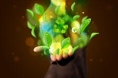 Young woman presenting eco green leaf recycle energy concept Royalty Free Stock Images