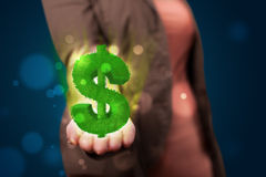 Young woman presenting green glowing dollar sign Stock Photos