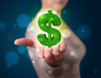 Young woman presenting green glowing dollar sign Royalty Free Stock Image