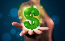 Young woman presenting green glowing dollar sign Stock Photography
