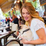 Young woman with a pug in a street cafe. Attractive young woman sits with a cute pug in the arms in a street cafe Stock Photo
