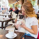 Young woman with a pug in a street cafe. Attractive young woman sits with a cute pug in the arms in a street cafe Stock Photos