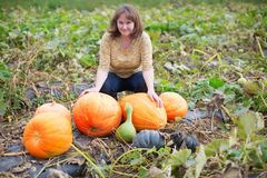 Young woman on the pumpkin patch Stock Image
