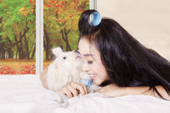 Young woman with a puppy licking her. Attractive woman smiling and lying on the bed with a Maltese dog licking her face in the bedroom Stock Photo