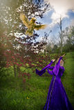 Young woman in purple gown throwing a chicken in the air. Royalty Free Stock Images