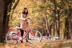 Young woman pushing vintage bicycle during autumn season. Retro vintage portrait of young woman pushing vintage bicycle at the tree in the grass field park royalty free stock photos