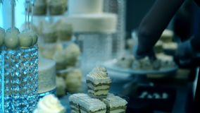 Young woman puts cakes on plate, preparing table for wedding catering, employee lays white round dessert, on desk there stock video footage