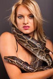 Young woman python Stock Photo