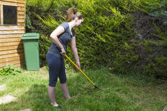 Young woman raking grass in garden Royalty Free Stock Image