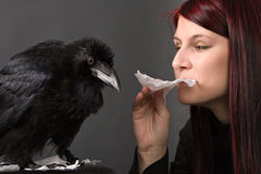 Young woman with raven Stock Photos