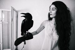 Young woman with raven inside Royalty Free Stock Photo
