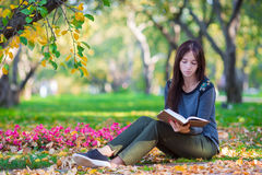 Young woman reading book in beautiful autumn day Royalty Free Stock Photography