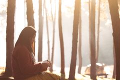 Young woman reading a book in the nature park with freshness. In the morning with sunlight in vintage color tone Royalty Free Stock Photos