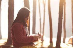 Young woman reading a book in the nature park with freshness. In the morning with sunlight in vintage color tone Royalty Free Stock Images