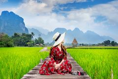 Young woman reading a book and sitting on wooden path with green rice field in Vang Vieng, Laos. Young woman sitting on wooden path with green rice field in Vang Royalty Free Stock Images