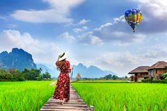 Young woman reading a book and sitting on wooden path with green rice field in Vang Vieng, Laos.  Stock Image