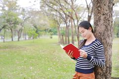 Young woman reading a book standing lean against trunk tree in summer park outdoor stock image