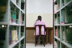 Young woman reading in library. A young woman reading in the library Royalty Free Stock Images