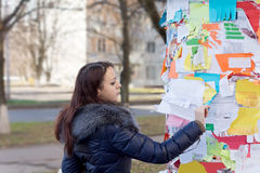 Young woman reading a notice on a noticeboard Royalty Free Stock Image