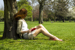 Young woman reading under a tree. Young woman reading under the shade of a tree Royalty Free Stock Photography