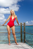 The young woman in a red bathing suit on sea background Stock Photos
