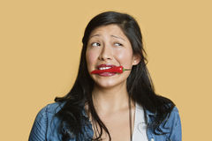 Young woman with red chili pepper in mouth over colored background Royalty Free Stock Images