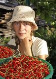 The young woman and red currant. Stock Photos