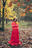 Young woman in red dress with crown of autumn yellow leaves Stock Photos