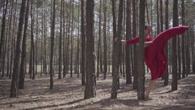 Flexible young woman in red dress dancing in the forest. Beautiful lady touching a tree. Concept of female tenderness stock footage