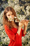 Young woman in red dress enjoying smell of blooming tree Stock Photos