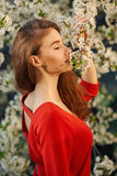 Young woman in red dress enjoying smell of blooming tree Royalty Free Stock Photo