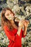 Young woman in red dress enjoying smell of blooming tree Royalty Free Stock Image