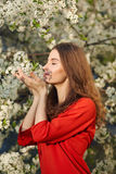 Young woman in red dress enjoying smell of blooming tree Royalty Free Stock Images
