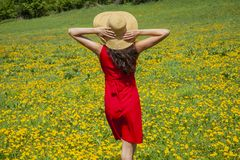 Young woman in red dress is laying on the grass full of yellow flowers. Woman in red shoe dress is enjoying the summer weather royalty free stock photo
