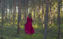 Young woman in red dress walking in the forest Stock Image