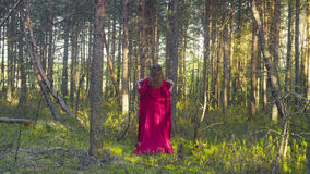 Young woman in red dress walking in the forest Royalty Free Stock Photos