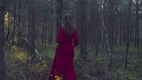 Young woman in red dress walking in the forest Royalty Free Stock Images